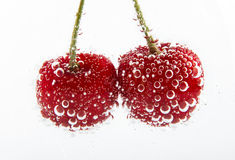 Cherries in water Royalty Free Stock Photo