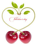 Cherries with water drops. Happy Valentine!. Photo-realistic vector. Cherries with water drops Royalty Free Stock Photography