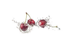 Cherries with water splashes, isolated on white background. Three cherries splashing water on white background stock photography