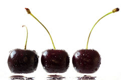Cherries on a wet surface Royalty Free Stock Photo
