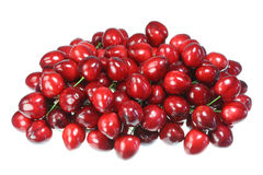 Cherries on white. Stock Image