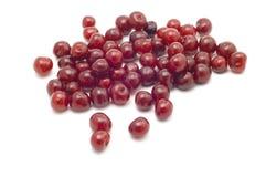 Cherries on white stock images