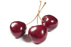 Cherries on white background Stock Photos
