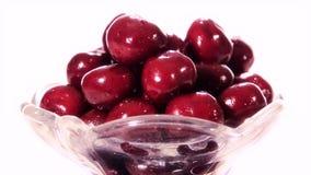 Cherries stock video