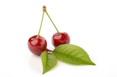 Cherries on a white background. Fresh and healthy cherries on a white background isolated Royalty Free Stock Images