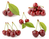 Cherries on a white background. Fresh and healthy cherries on a white background isolated Stock Image