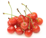 Cherries in a white background Stock Images