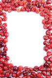 Cherries on white background - studioshot Royalty Free Stock Image
