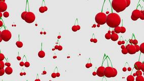 Cherries on white. In backgrounds stock footage