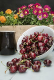 Cherries in a white bowl, Royalty Free Stock Images