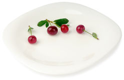 Cherries on white plate Stock Images