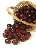Cherries from wicker Stock Photography