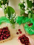 Cherries in a wicker basket, bouquet of lily of the valley in a glass and a handful of cherries Stock Photos