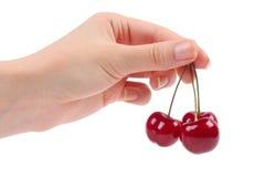 Cherries in the women's hand Royalty Free Stock Photo