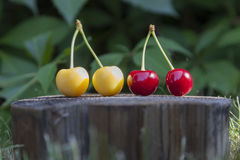 Cherries at wood Stock Images