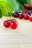 Cherries on wooden background Stock Images