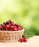 Cherries on a wooden table Stock Photos