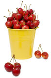 Cherries on a Yellow Bucket Stock Images