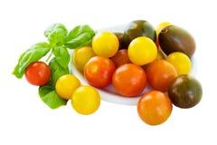 Cherrry tomatoes Stock Image