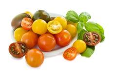 Cherrry tomatoes Royalty Free Stock Photos