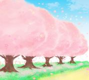 Cherry‐tree‐lined path in sunny day that`s very beautiful vector illustration