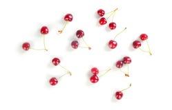 cherry świeże Obraz Royalty Free