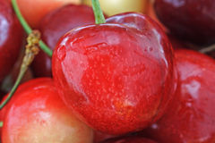 Cherry. Red wet cherry for background Royalty Free Stock Photo
