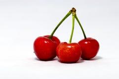 Cherry Arkivbild