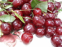 Cherry. Fresh red cherry with drops of water Royalty Free Stock Photos