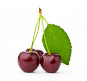 Cherry. Objects on white background Royalty Free Stock Photography