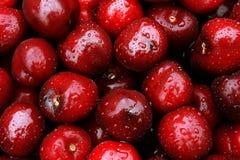 Cherry. Fresh cherry.Closeup shot,perfect background royalty free stock photos