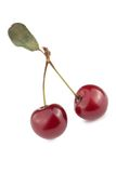 Cherry. Isolated on a white background Royalty Free Stock Photos