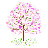 Cherry. Color illustration of a cherry tree in spring Royalty Free Illustration