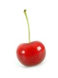 Cherry. On white Stock Image