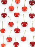 Cherry Arkivbilder