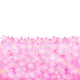 Cherry. Background illustration of cherry beautiful pink Royalty Free Illustration