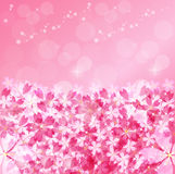 Cherry. Background illustration of cherry beautiful pink Royalty Free Stock Images