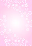 Cherry. Background illustration of beautiful pink cherry blossoms Stock Photo