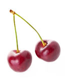 Cherry. Sweet cherry isolated on white background Royalty Free Stock Photos