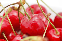 Cherry. Close-up on white background Royalty Free Stock Image