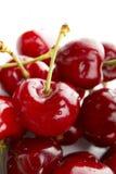 Cherry Royaltyfri Fotografi
