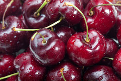 Cherry Royaltyfria Bilder