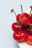 Cherry. A plate of cherry fruit Royalty Free Stock Image