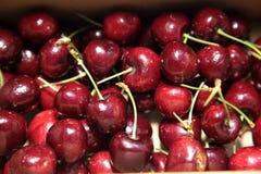 Cherry Stock Image