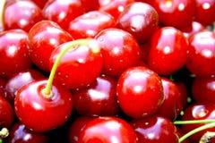 cherry Zdjęcie Stock