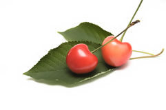 Cherry. Two cherry on green leaf Stock Images