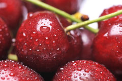 Cherry. Fresh cherry with drops on background royalty free stock image