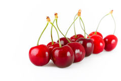 Cherry. Convoy of cherry on the white background stock photography