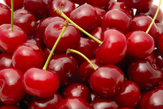 Cherry. Background from a red cherry with green fruit steams Stock Images