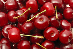 Cherry. Background from a red cherry with green fruit steams Royalty Free Stock Photography